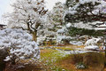 Japanese Garden in Winter Stock Photography