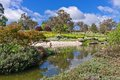 Japanese gardens in cowra new south wales australia Royalty Free Stock Images