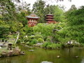 Japanese house and garden with lake Stock Image