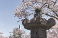 The japanese lantern in washington dc on tidal basin during annual cherry blossom festival monument can be Stock Photo