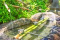 Japanese purification fountain Royalty Free Stock Photo