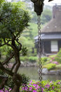 Japanese rain chain a or kusari doi which is a traditional drainage system found in many temples and houses the Royalty Free Stock Photography