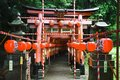 Japanese red gates Stock Image