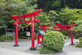Japanese red wooden torii gates Royalty Free Stock Photo