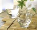Japanese Sake Royalty Free Stock Photo