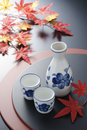 Japanese sake in autumn
