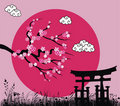 Japanese sakura blossom and tori gate Royalty Free Stock Photo
