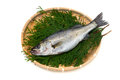 Japanese sea bass lateolabrax japonicus cooking ingredient series available for clipping work Stock Images