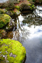 Japanese style garden pond or stream Royalty Free Stock Photo