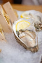 Japanese style oyster and sea urchin laid over crushed ice Stock Image