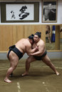 Japanese sumo at sumo training Royalty Free Stock Photos