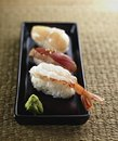Japanese sushi front view,shrimp tuna scallop Stock Image
