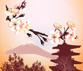 Japanese symbols with flower of sakura Royalty Free Stock Photography