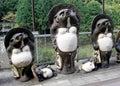 Japanese Tanuki Sculptures