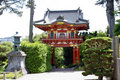 Japanese tea garden Royalty Free Stock Photo