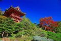Japanese Tea Garden in San Francisco Royalty Free Stock Photos