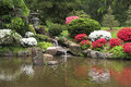 Japanese tea house gardens and fountain in spring the shofuso azalea blooms with stone lanterns koi pond Stock Image