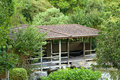 Japanese teahouse rockhampton botanic gardens queensland australia Royalty Free Stock Photos