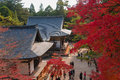Japanese temple in autumn with red leaves kyoto Royalty Free Stock Image