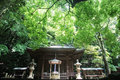 Japanese temple in forest. Selective focus Royalty Free Stock Photo