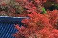 Japanese temple s roof of nanzen ji kyoto Royalty Free Stock Photo