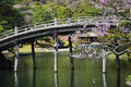 Japanese traditional garden wooden bridge ritsurin in takamatsu shikoku japan pond with and spring blossom Stock Photo