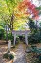 Japanese traditional temple in autumn garden tokyo japan Stock Photo