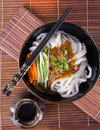 Japanese udon noodles cuisine thick wheat Royalty Free Stock Image