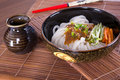 Japanese udon noodles cuisine thick wheat Royalty Free Stock Photography