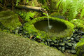 Japanese water bamboo fountain with moss Royalty Free Stock Photography
