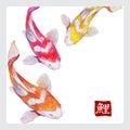 Japanese watercolor carps koi swimming vector format calligraphic simbol of carp Royalty Free Stock Image
