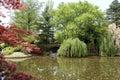 Japaneses garden Royalty Free Stock Photo