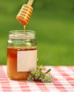 Jar of honey against nature background Royalty Free Stock Photos