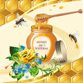Jar of honey with wooden dipper Royalty Free Stock Photography