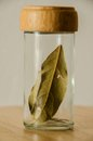Jar with spice leaf Royalty Free Stock Photo