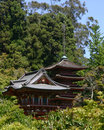 Jardins japonais à San Francisco Golden Gate Park Image stock