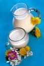 Jarro y vidrio de leche Fotos de archivo libres de regalías