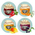 Jars with red strawberry, healthy pineapple, apple and blueberry jam