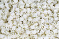 The jasmine for create thai garland at street market thailand Stock Image