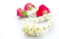 Jasmine garland close up of isolated on white background Royalty Free Stock Photography