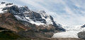 Jasper alberta canada august athabasca glacier in jasper national park on Stock Images