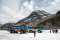 Jasper alberta canada august snow coaches parked on the a athabasca glacier in national park Royalty Free Stock Photography