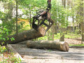 Jaws on arm moving a log grapple into location for loading truck to transport to saw mill Stock Photo