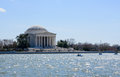 Jefferson memorial across the tidal basin washington dc Stock Photography