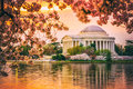 Jefferson Memorial in DC During spring Royalty Free Stock Photo