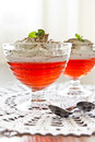 Jelly dessert with cream chocolate and mint Royalty Free Stock Images