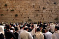 Jerusalem oct orthodox jewish pray at the western wall during the jewish holiday of sukkot on october in jerusalem israel Royalty Free Stock Photography