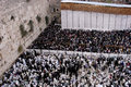 Jerusalem oct orthodox jewish pray at the western wall during the jewish holiday of sukkot on october in jerusalem israel Stock Photography
