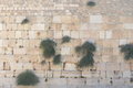 Jerusalem wailing wall Royalty Free Stock Photo