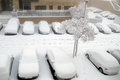 Jerusalem of white: Snow falls in capital Stock Photography